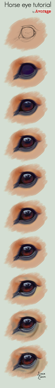 Horse Eye Tutorial