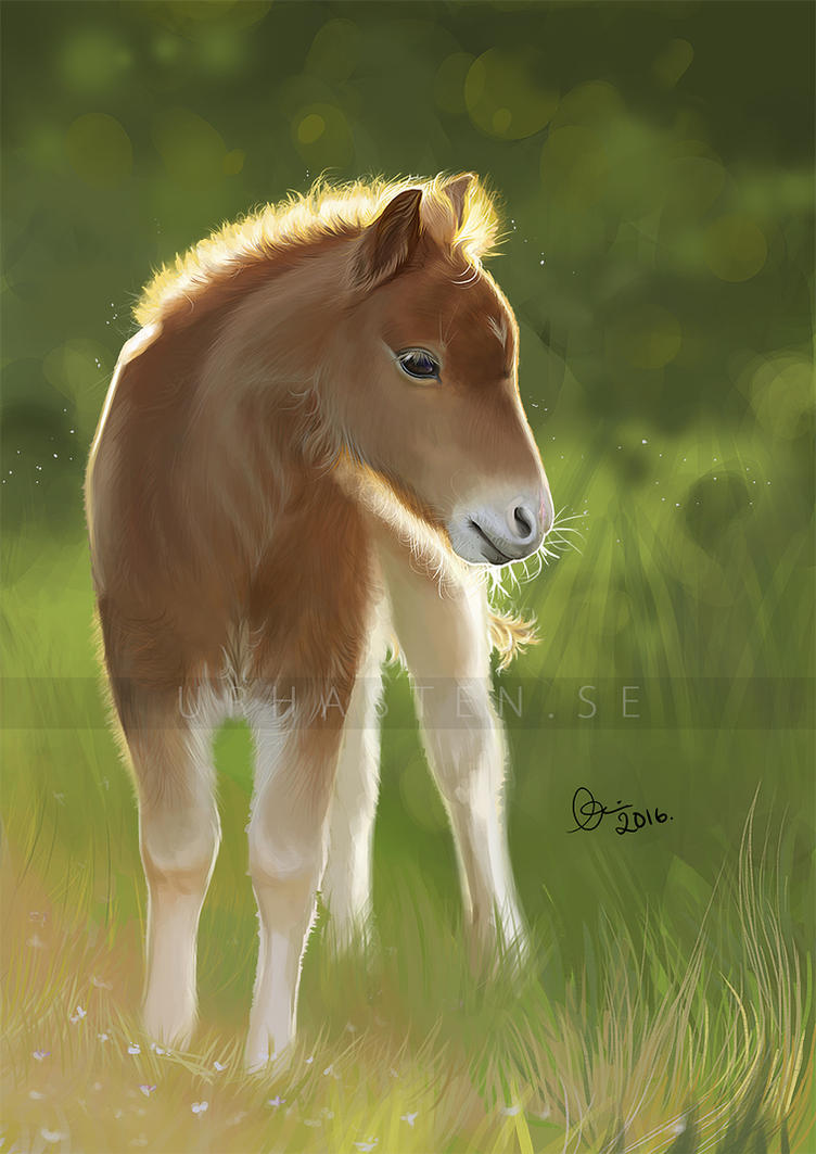The Little Beauty by Avorage