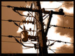 TelePole Series 2 - Wires