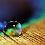 sparkling light I. by llovelace