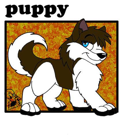 Puppy by Somberwolf