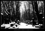 warsaw's jewish cemetery