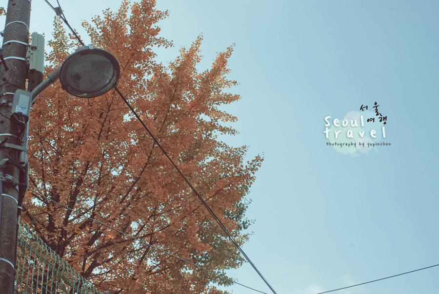 autumn by reiime