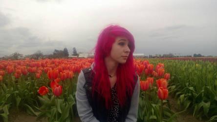 Tulips :o