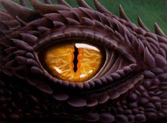 Dragon Eye by MidgarZolom