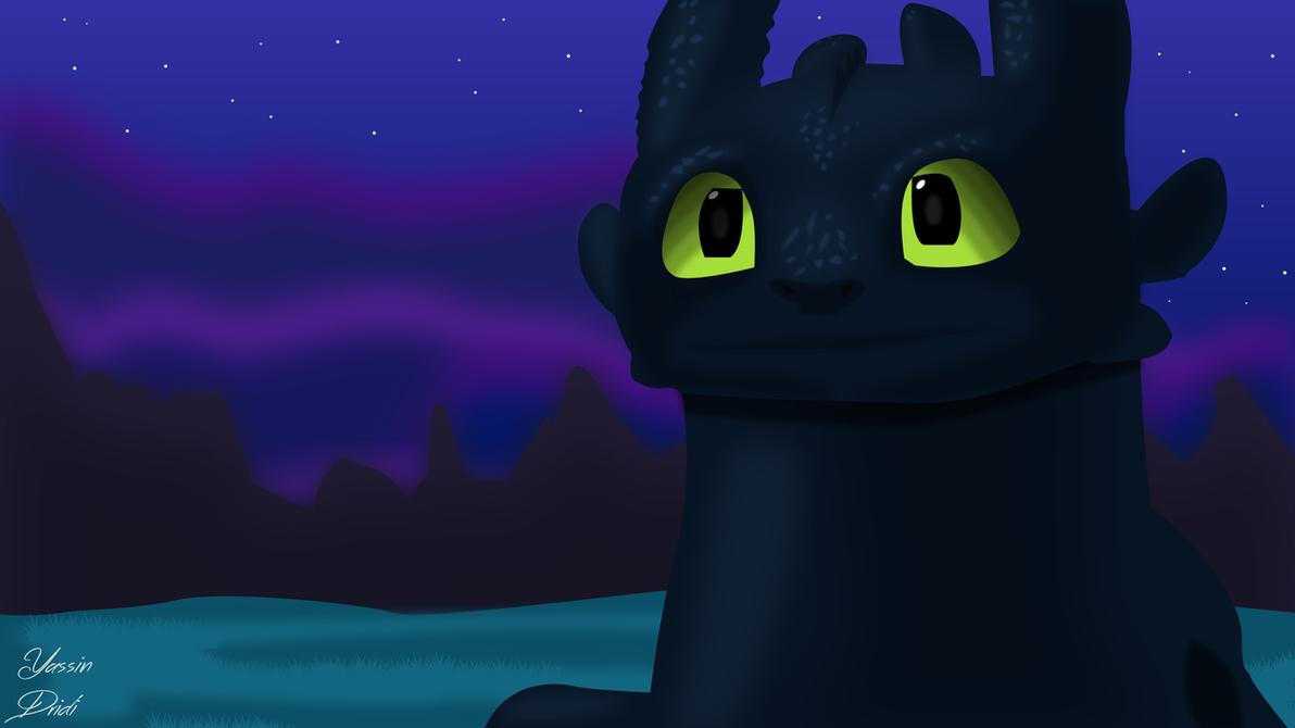 Nightfury by dridiyassin