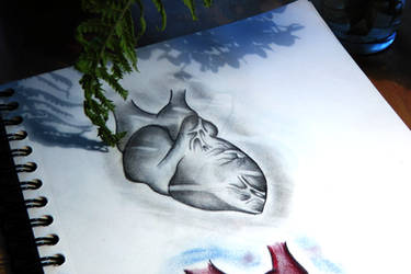 My concept of a Heart