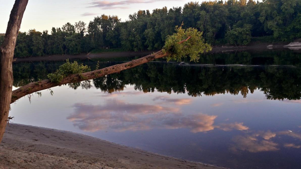 Catfishing sunset 5 by Mr2Lizard