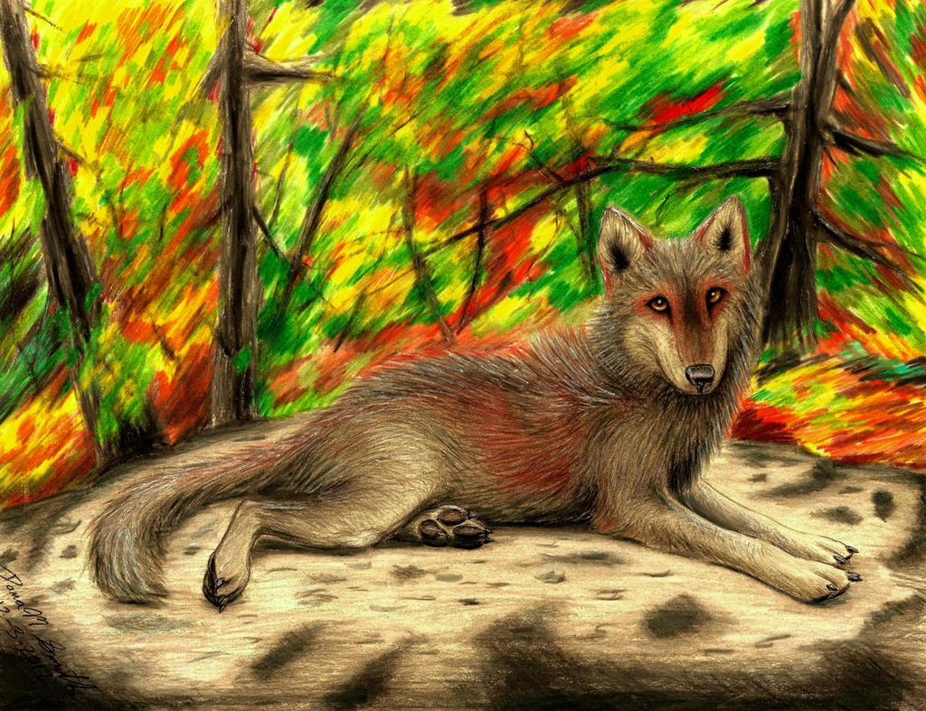 B-day gift: Wolf by ZeitgeistDragon