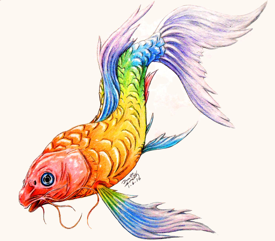 Rainbow koi by cryofthebeast on deviantart for Rainbow koi fish