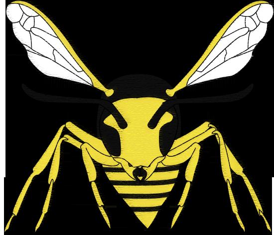 1954_washington_wasps_logo_by_verasthebr