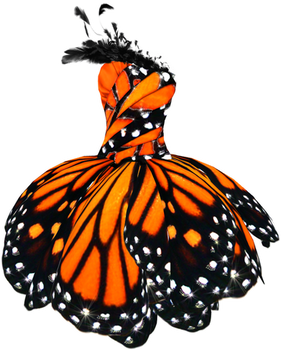 Butterfly Dress Png stock