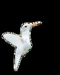Little albino humming bird png stock