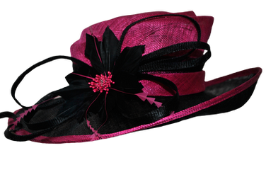 Fancy Pink hat by DoloresMinette