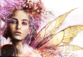 fairy by optiknerve-gr
