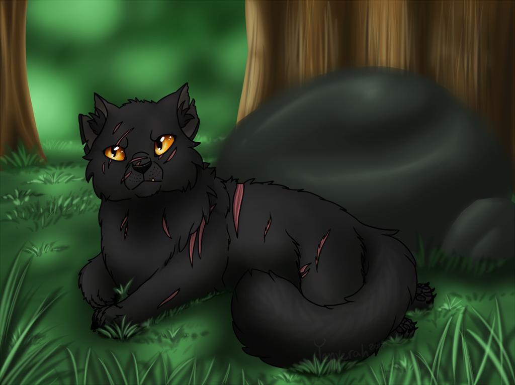 The Grumpy Medicine Cat by Yenverah