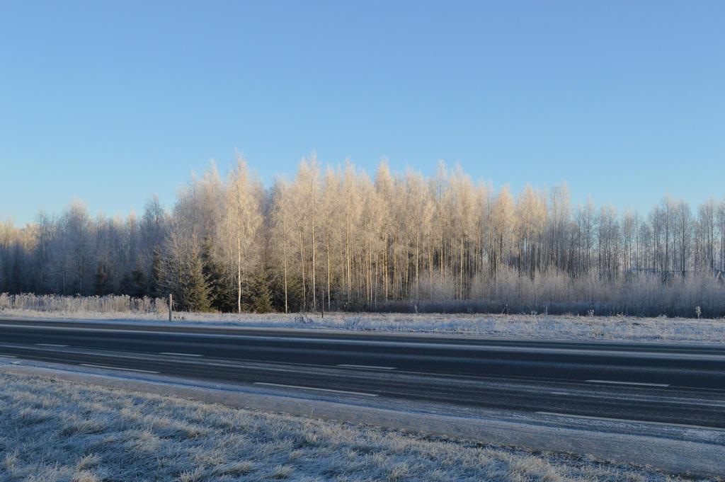 Winter scape #2 by CrosslineAnimator
