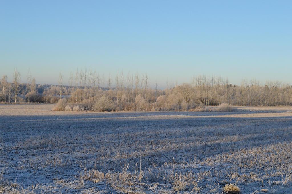 Winter scape #3 by CrosslineAnimator