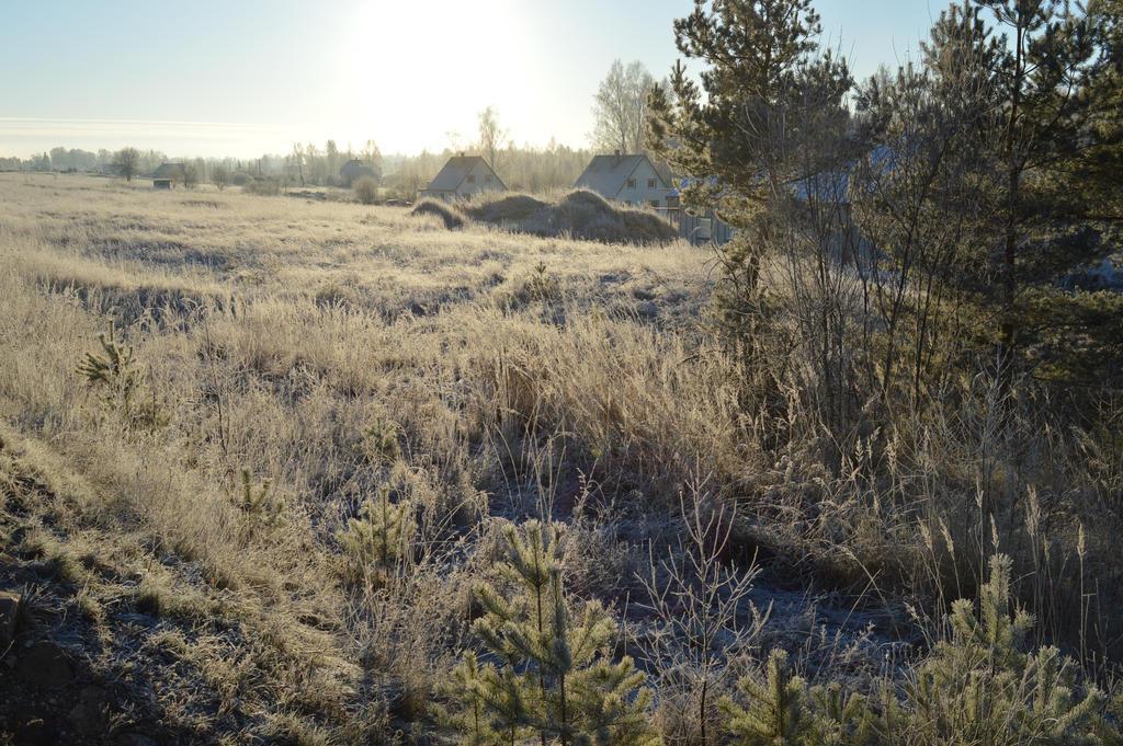 Winter scape #4 by CrosslineAnimator