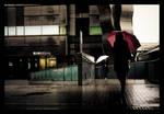 Umbrellas - 2