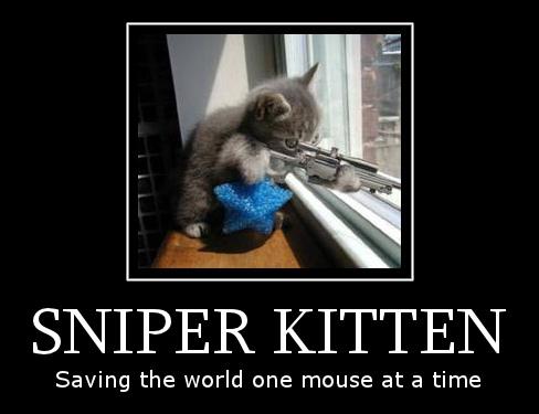 Sniper Kitten by Hitsosuki on DeviantArt
