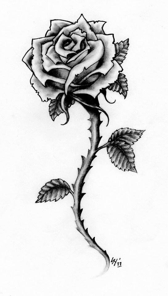 Rose Tattoo Design By Hamdoggz On Deviantart