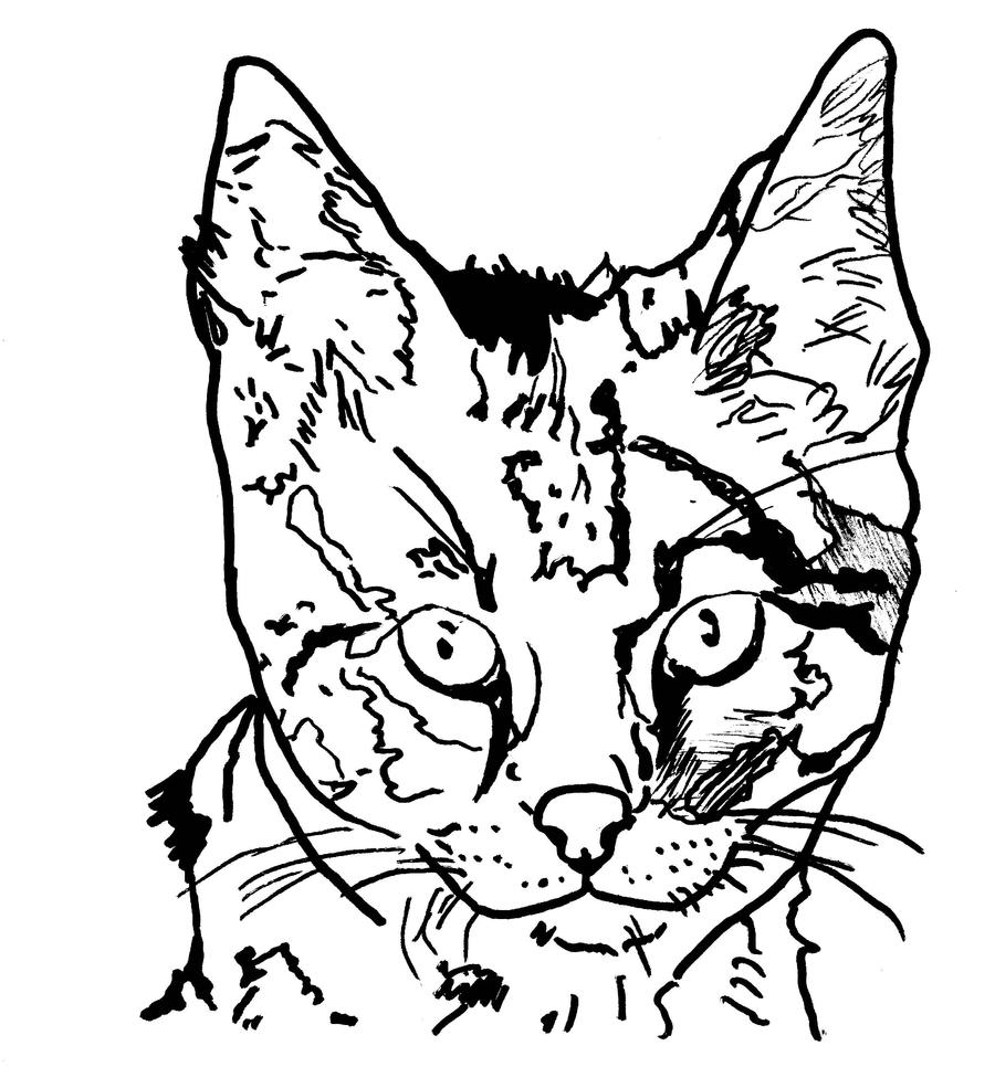 Savannah Cat by ~SemiarZ on
