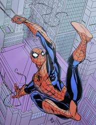 Spider-Man by Tim Levins