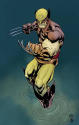 Wolverine - Speed Coloring