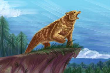 Bear by wingwolf-WinGD