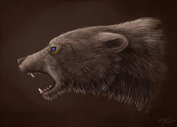 Bear Head by wingwolf-WinGD