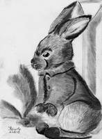 Peter Rabbit by SulaimanDoodle