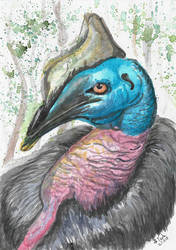 Cassowary the living dinosaur by SulaimanDoodle
