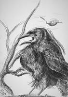 October tenth Raven by SulaimanDoodle