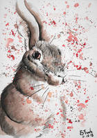 Hare Watercolor by SulaimanDoodle