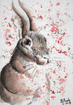 Hare Watercolor