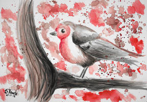 Watercolor European robin by SulaimanDoodle