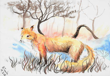 Fox in field watercolor by SulaimanDoodle
