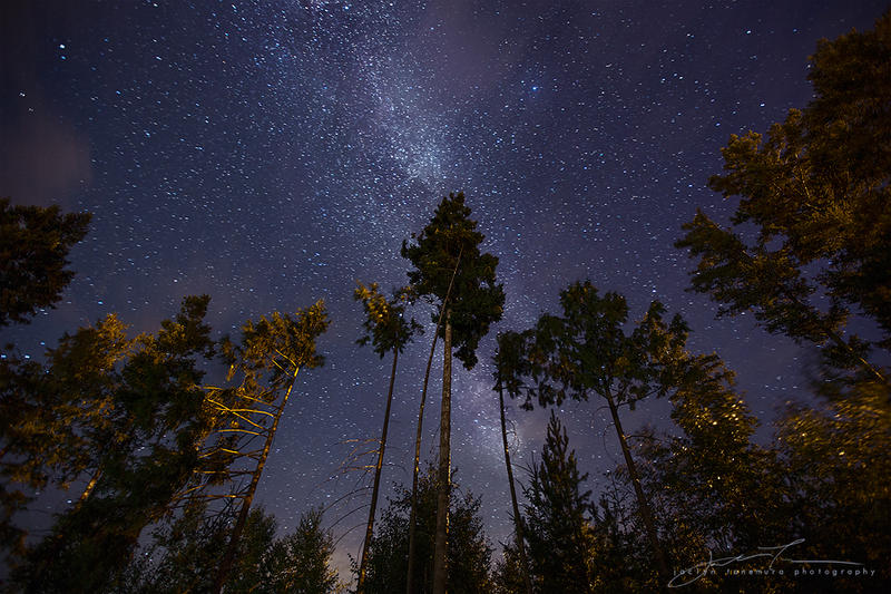 stargazers by jaelise