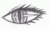 claymore eye by artlover2342