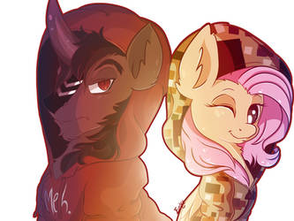 Something About Ponies and Hoodies