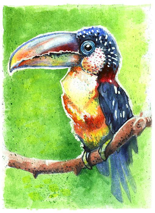 Bird by Osinka