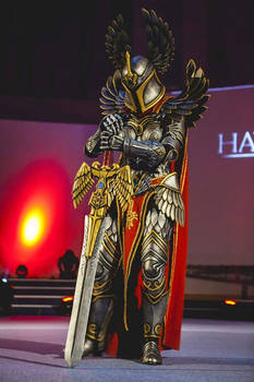Haven Might Hero - Paladin Ymoril cosplay