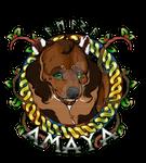 Amaya's Medallion 2020