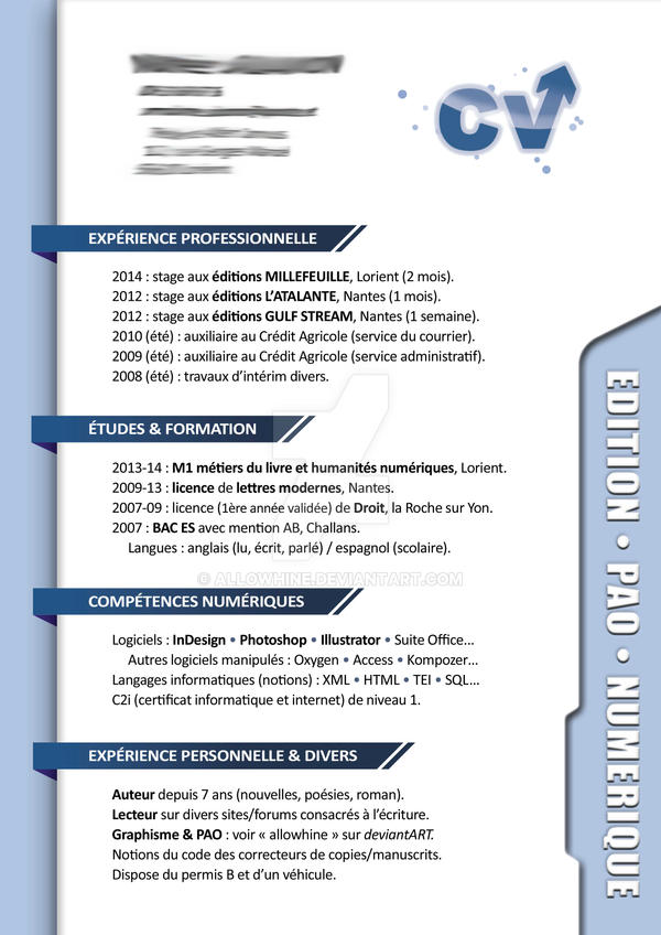 cv pro    resume by allowhine on deviantart