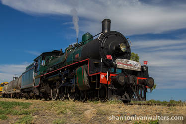 #1079 Approaching Barcaldine by ShannonIWalters