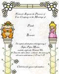 Super Paper Mario Invitation