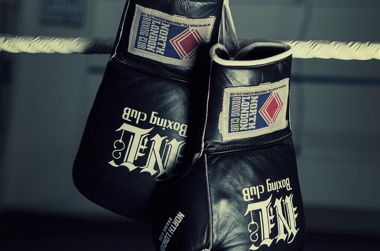 Boxing Gloves by tmz99