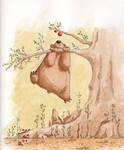 Bear wants apple