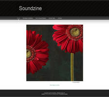 Soundzine Issue 11